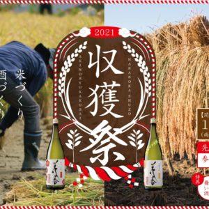 幻の米 『穂増』の収穫祭開催